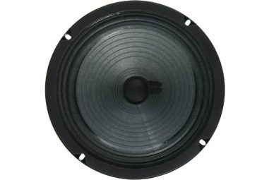 Best 8 Inch Guitar Speaker: Choose With Top Models Review 2020