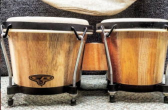 How to Play the Bongo Drums: Tips for Beginners